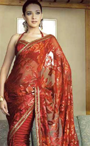 Bollywood-Saree
